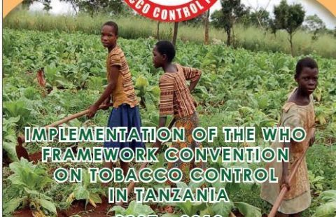 The cover of the 2012 shadow report of Tanzania's implementation of the WHO FCTC