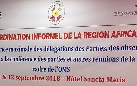 Transparency Workshop in Togo