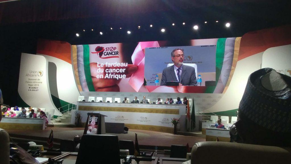 FCA at AU summit 4